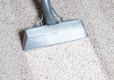 Carpet & Upholstery