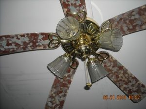 Mold on ceiling fan
